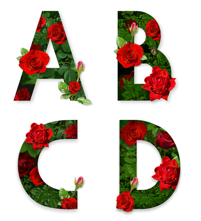 Photo pour A, B, C, D letters of the alphabet with red roses on white background - image libre de droit