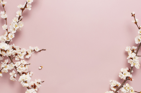 Foto de Spring border background with beautiful white flowering branches. Pastel pink background, bloom delicate flowers. Springtime concept. Flat lay top view copy space - Imagen libre de derechos