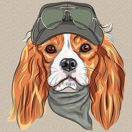 Foto de vector Hipster red dog Cavalier King Charles Spaniel breed in cap and cravat khakis and glasses - Imagen libre de derechos