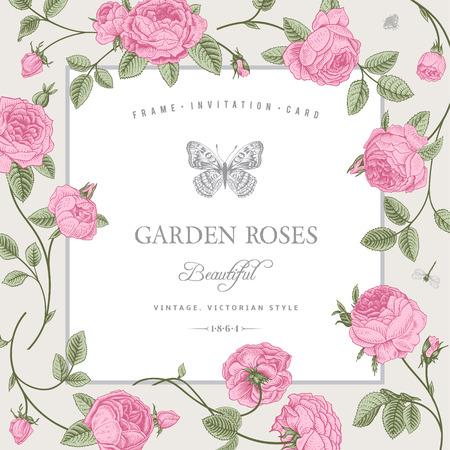 Ilustración de Vintage card with beautiful pink garden roses on a gray background - Imagen libre de derechos