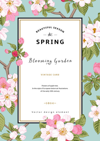 Illustration pour Vintage vector vertical card spring. Branch of apple tree blossoms pink flowers on mint background. - image libre de droit