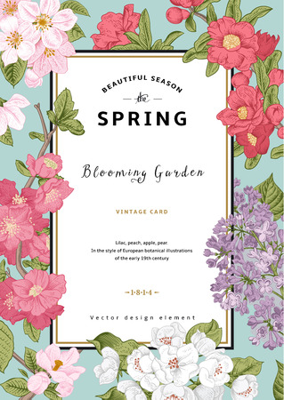 Illustration pour Vintage vector vertical card spring. Blooming branches of lilac, peach, pear, pomegranate, apple on mint background. - image libre de droit