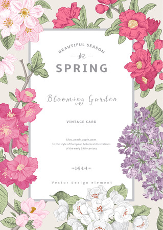Illustration pour Vintage vector vertical card spring. Blooming branches of lilac, peach, pear, pomegranate, apple on gray background. - image libre de droit