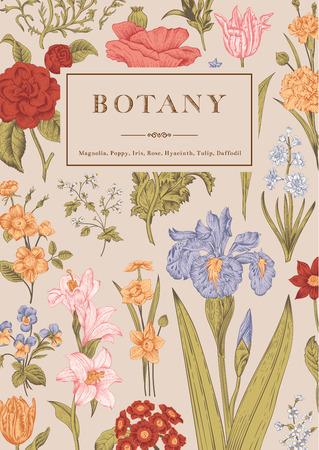 Ilustración de Botany. Vintage floral card. Vector illustration of style engravings. Colorful flowers. - Imagen libre de derechos