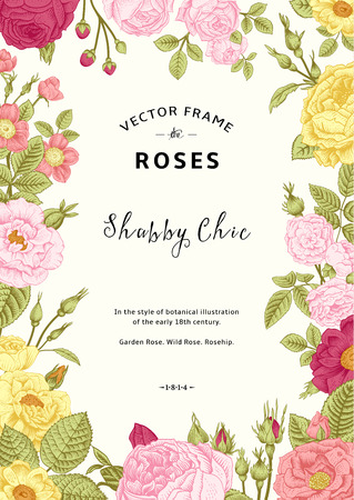 Illustration pour Vintage vector frame. Garden and wild roses. In the style of an old botanical illustration. Colorful. - image libre de droit
