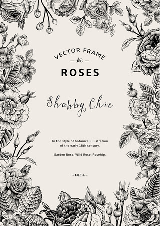 Illustrazione per Vintage vector frame. Garden and wild roses. In the style of an old botanical illustration. Black and White. - Immagini Royalty Free