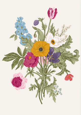 Illustration pour Victorian bouquet. Spring Flowers. Poppy, anemones, tulips, delphinium. Vintage botanical illustration. design element. - image libre de droit