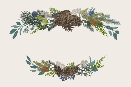 Illustration for Winter set. Floral Christmas compositions. Evergreen, cone, succulents, flowers, leaves, berries. Botanical vector vintage illustration. - Royalty Free Image