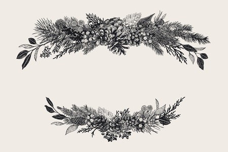 Illustration pour Winter set. Floral christmas compositions. Evergreen, cone, succulents, flowers, leaves, berries. Botanical vector vintage illustration. Black and white - image libre de droit