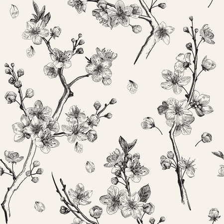 Illustration pour Sakura. Seamless pattern. Cherry blossom branches. Vector botanical illustration. Black and white - image libre de droit