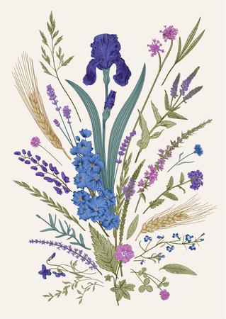 Illustration pour Summertime. Floral composition. Flowers and plants of fields and forests. Vector vintage botanical illustration. - image libre de droit