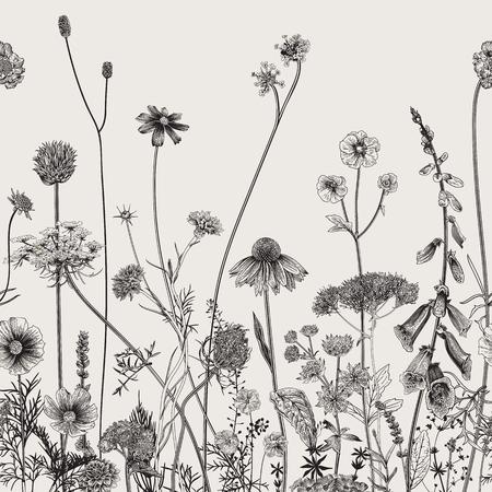 Ilustración de Floral border. Summer flowers. Vector illustration. Black and white - Imagen libre de derechos