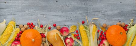 Photo for Autumn still life with pumpkin, apples, corn, nuts and leaves on vintage grey wooden table background, copy space, panoramic format - Royalty Free Image