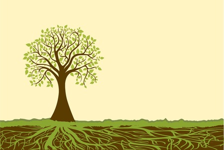 Illustration for Vector tree - Royalty Free Image