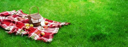 Photo pour Checkered Plaid Picnic Apples Basket Fruit Green Grass Summer Time Rest Background Design Web Concept Long Format - image libre de droit