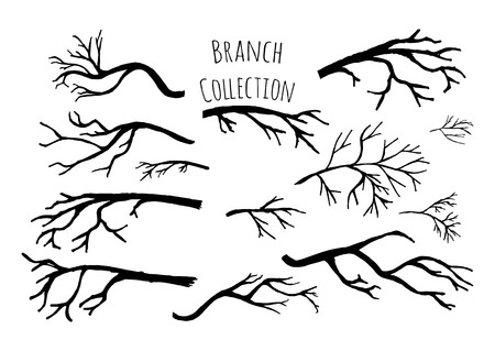 Illustration pour Hand drawn tree branches collection.  - image libre de droit