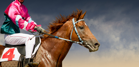 Photo pour Jokey on a thoroughbred horse runs isolated on color background - image libre de droit