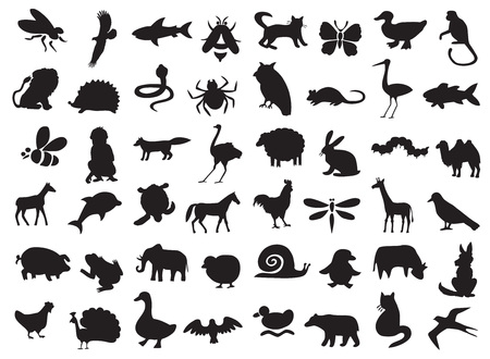 Illustration pour silhouettes of wild and domestic animals, birds and insects on a white background. - image libre de droit