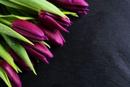 Foto de Purple tulips on slate flowers - Imagen libre de derechos