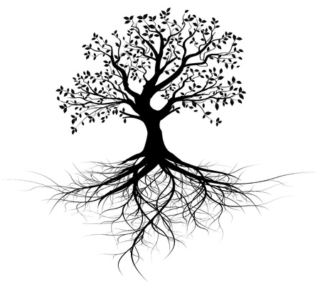 Illustration for whole black tree with roots isolated white background vector - Royalty Free Image
