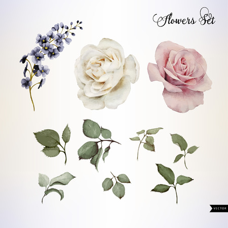 Illustration pour Flowers and leaves, watercolor, can be used as greeting card, invitation card for wedding, birthday and other holiday and  summer background. Vector illustration. - image libre de droit