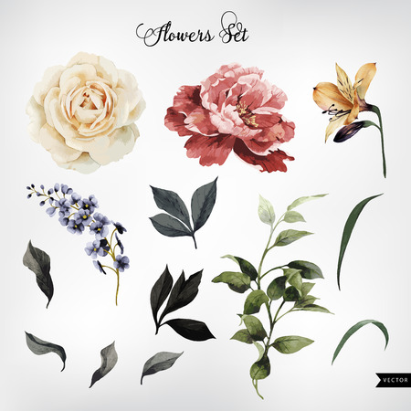 Ilustración de Flowers and leaves, watercolor, can be used as greeting card, invitation card for wedding, birthday and other holiday and  summer background. Vector illustration. - Imagen libre de derechos