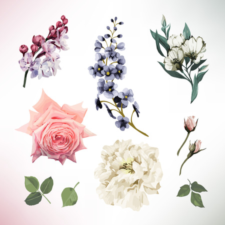 Illustration pour Greeting card with flowers. Vector - image libre de droit