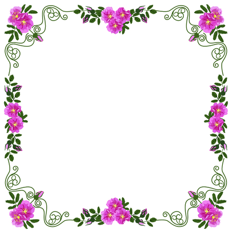 Ilustración de Decorative frame, frame for the text of square shape, with vignettes in the form of leaves and red colors of a dogrose, the color vector image - Imagen libre de derechos