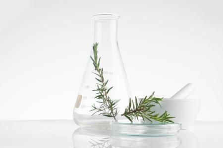 Foto de laboratory and research with alternative herb medicine natural skin care - Imagen libre de derechos