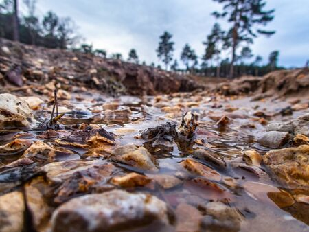 Photo for Low level view of water in gully with stones . Swinley Forest Bracknell. - Royalty Free Image