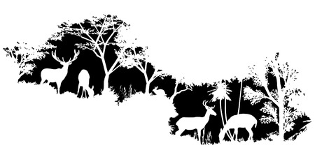 Illustration for animal of wildlife (deer) - Royalty Free Image