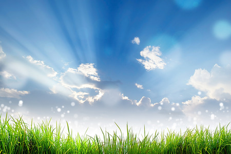 Foto de Green Grass and bokeh light sun and cloud sky - Imagen libre de derechos