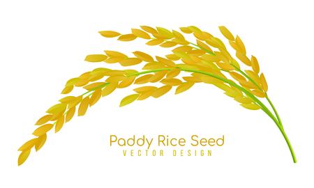 Ilustración de Yellow paddy rice seed vector design - Imagen libre de derechos