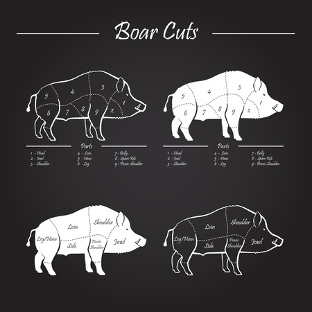 Illustration for Wild hog, boar game meat cut diagram scheme - elements set on chalkboard - Royalty Free Image