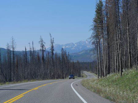 Photo pour Wyoming, USA- July 2018: Wide view of the winding scenic road at Grand Teton National Park, flanked by trees leftover from previous forest fires. - image libre de droit