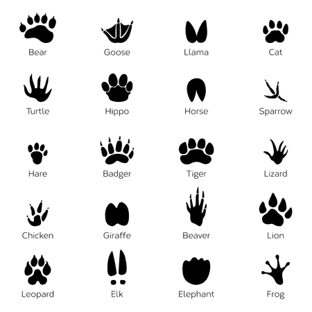 Illustration pour Different footprints of birds and animals. Vector monochrome pictures on white background - image libre de droit