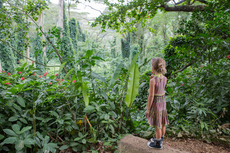 Photo for Little girl eating lollipop at Na Ala Hele Monoa Falls Trail, Oahu, Hawaii standing admiring the lush tropical green vegetation in paradise - Royalty Free Image