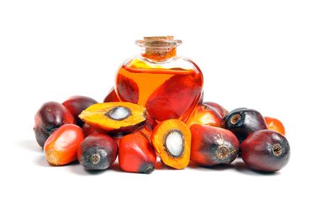 Photo pour Oil Palm Fruit ripe whole products food bulb bottle - image libre de droit