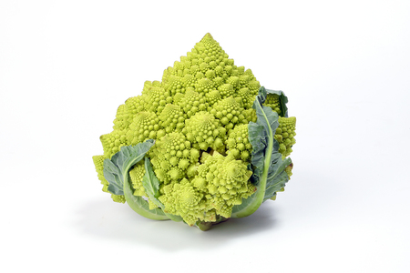 Photo pour Romanesco broccoli Roman cauliflower Romanesque Green on white background  - image libre de droit