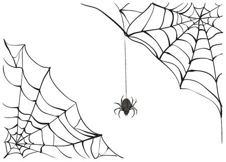 Illustration pour Spiderweb. Big black spider web. Black scary spider of web. Poison spider. Illustration in vector format - image libre de droit