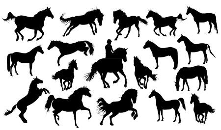Illustration pour Set of vector horses silhouettes - image libre de droit