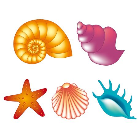 Illustration pour Color shells - image libre de droit
