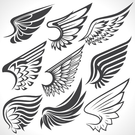 Illustration for The Vector image of Big Set sketches of wings - Royalty Free Image