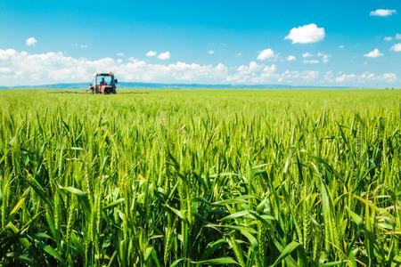 Foto de Spraying wheat crops field - Imagen libre de derechos