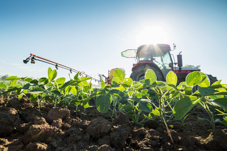 Photo for Tractor spraying soybean crops with pesticides and herbicides - Royalty Free Image