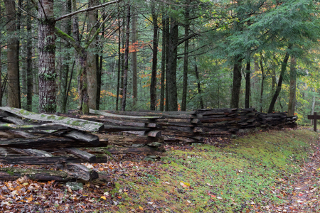 Photo pour Split rail fence view from side with forest behind on a wet fall day, horizontal aspect - image libre de droit