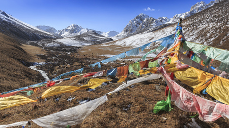 Photo for Tibetan landscape in China with prayer flags on foreground and mountains and yaks on background - Royalty Free Image