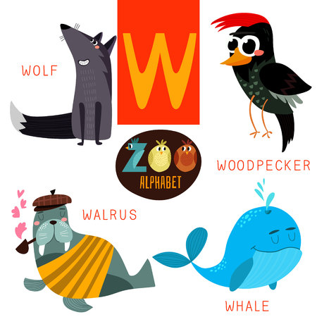 Photo pour Cute zoo alphabet in vector.W letter. Funny cartoon animals:Wolf,woodpacker,walrus,whale. Alphabet design in a colorful style. - image libre de droit