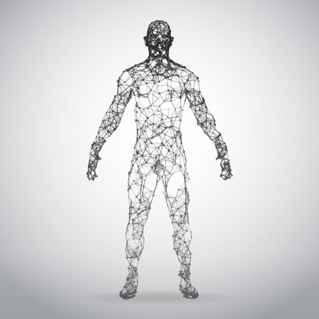 Illustration pour Abstract Wire frame human body. Polygonal 3d model on white background. Vector Illustration - image libre de droit