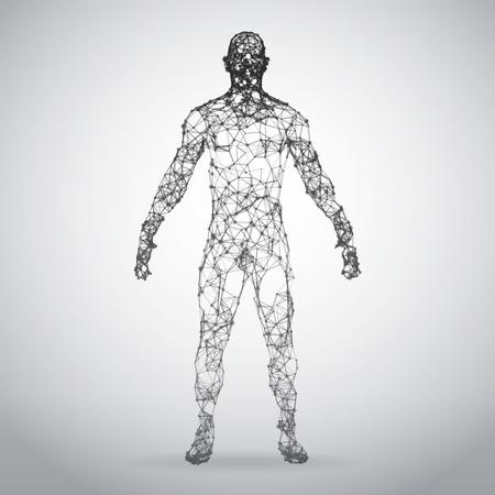 Ilustración de Abstract Wire frame human body. Polygonal 3d model on white background. Vector Illustration - Imagen libre de derechos